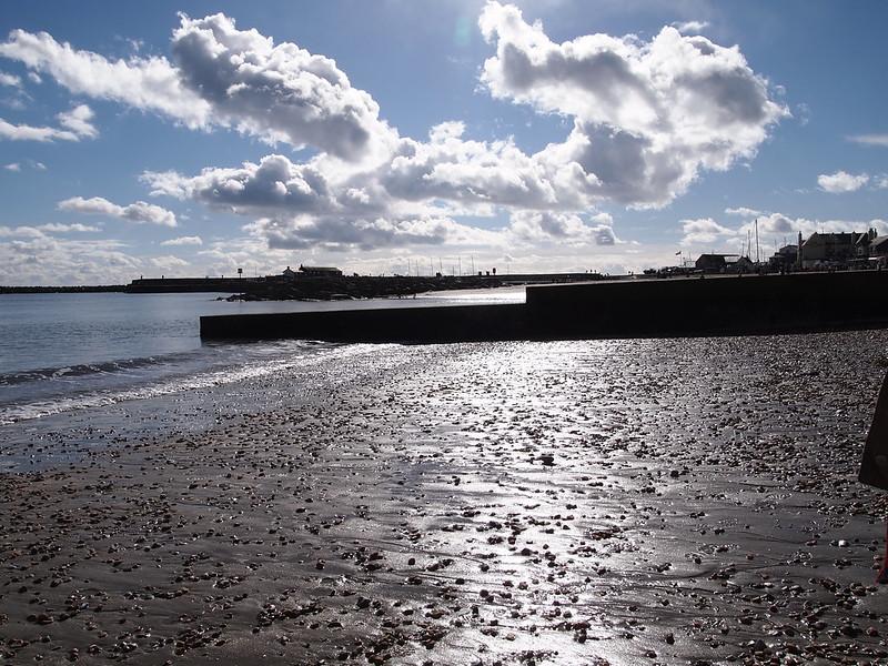 Geologising on Lyme Regis