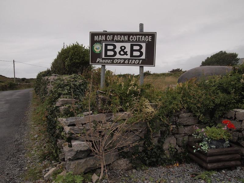 P9176859